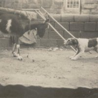 Postcard marked The Challenge - possibly taken by Gordon Sutcliffe's mother.jpg